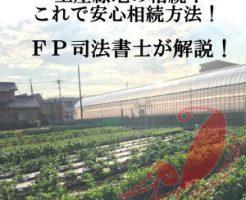 相続した生産緑地の写真